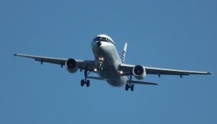 Flightfest 2013