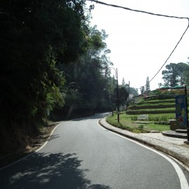 Winding Uphill Road