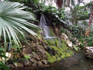 Frankfurt's Tropical Gardens