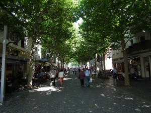 The tree lined streets...