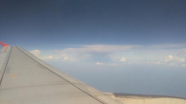 Flight Home!