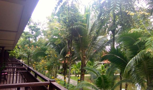 Khaolak Laguna Resort!