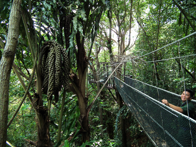 Rasa Ria's Suspension Bridge